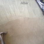 Alameda-Carpet-Cleaning-Company