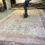 Alameda-Professional-Rug-Cleaning
