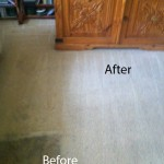 Bedroom-Carpet-Cleaning-Alameda