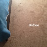 Bedroom-Carpet-Cleaning-Alameda-A