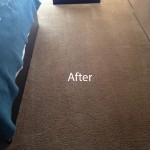 Bedroom-Carpet-Cleaning-Alameda-B