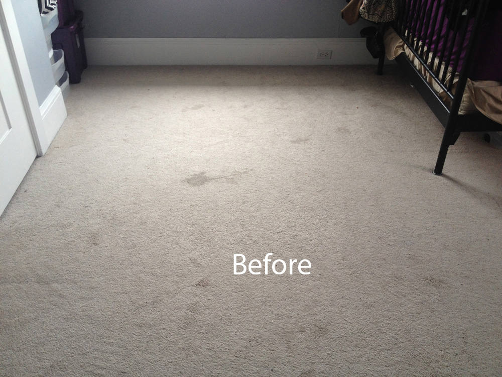 Carpet Cleaning Carpet Cleaning Alameda 510 2101590