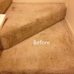 Stairs-Carpet-Cleaning-Alameda-A